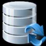 Server Icona