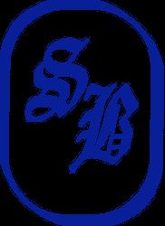 Logo EsseBi Tecnologia